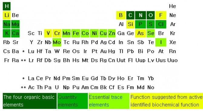 주기율표에 본 인체에 필수적인 원소 27종. 짙은 녹색은 유기분자에 기본이 되는 네 원소. 녹색은 꽤 존재하는 원소들. 연두색은 미량일지라도 필수적인 원소들. 노란색은 포유동물에 꼭 필요한 것 같은데 생화학적 기능은 불명확한 원소들. 최근 연구결과 여기에 브롬이 추가돼야 한다는 사실이 밝혀졌다. - 막스플랑크연구소 제공